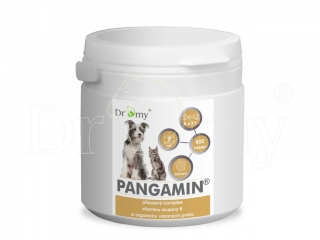 Dromy Pangamin 800 tablet